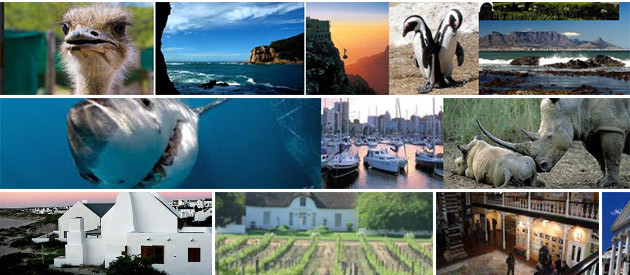BuzzAround - Tours and Transfers - South Africa